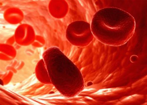 Гемостазиологические исследования
